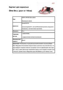 Картинг для взрослых 9л.с. описание